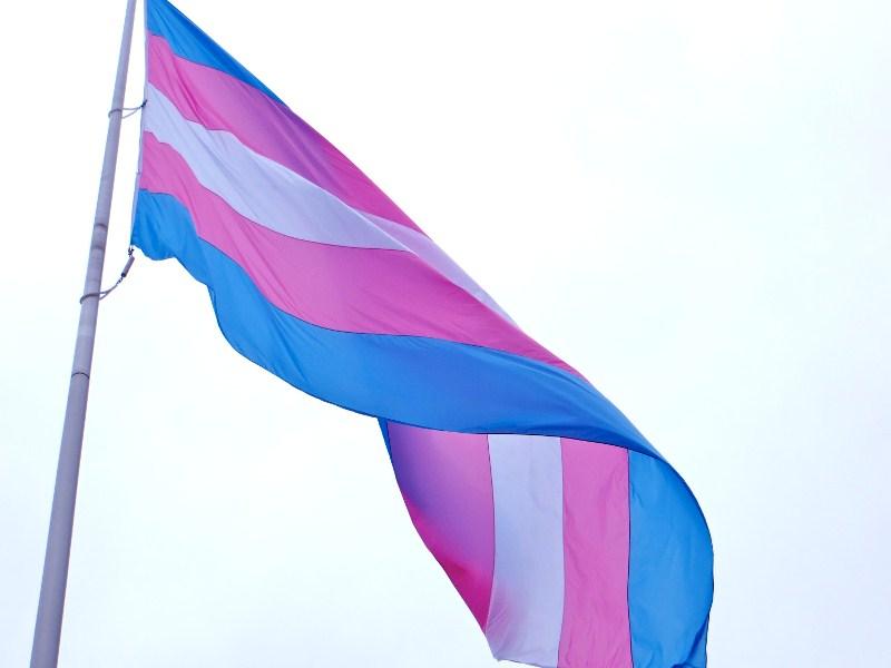 nao-transfobia