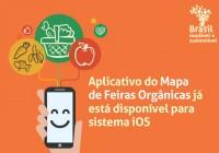banner_aplicativo_MSD