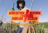26.07_merenda escolar_agricultura familiar_MG