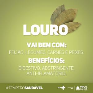 Temperos saudáevis #3_louro
