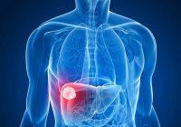 pesquisa_hepatite B