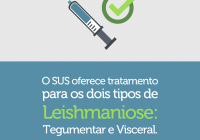 leishmaniose 1