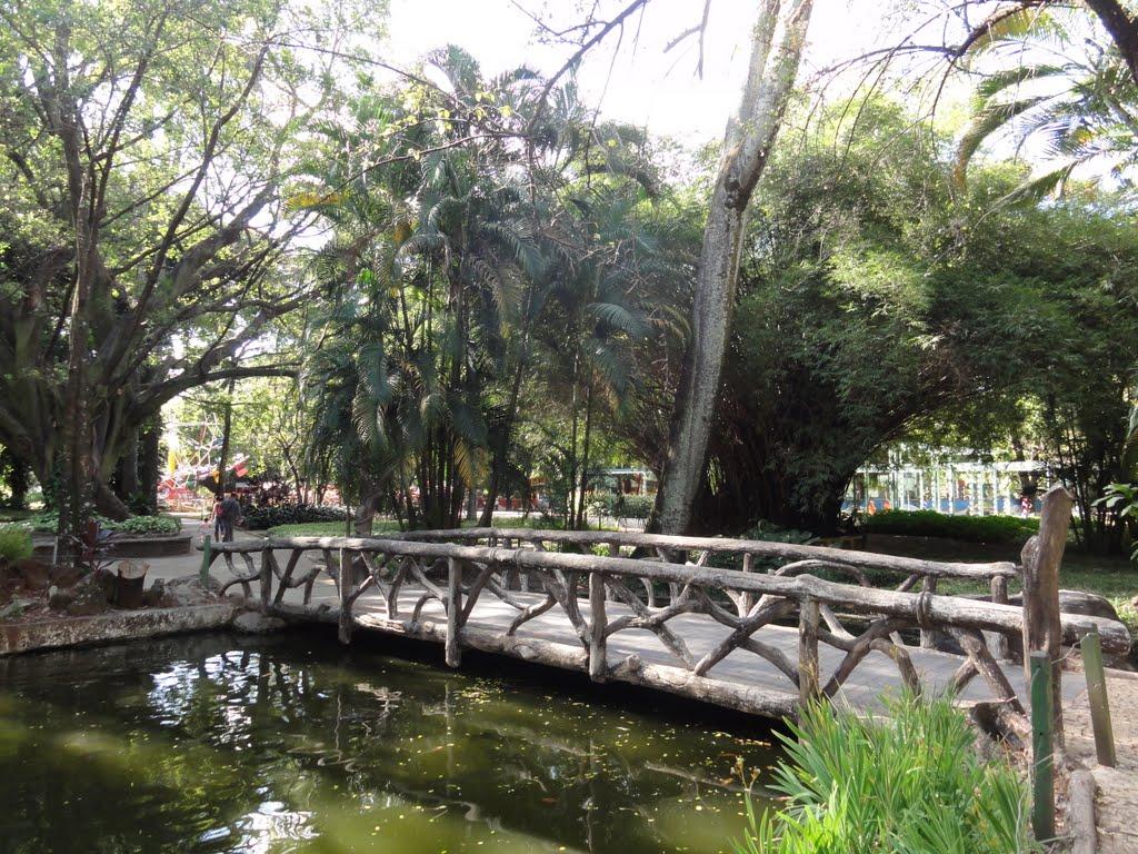 Parque Municipal Américo Renné Giannetti_BH_2017