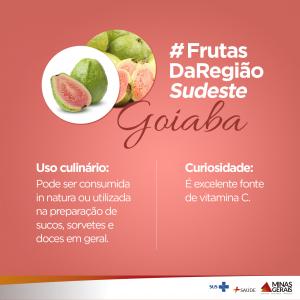 frutassudeste_goiaba