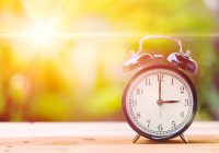 Retro 3 o'clock and Morning sun with Bright and Flare Day Light Blur Green Garden Background with space for text.